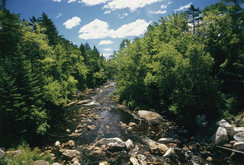 ✈ Keeping Kosher in Adirondacks Mountains, NY, Burlington & Stowe
