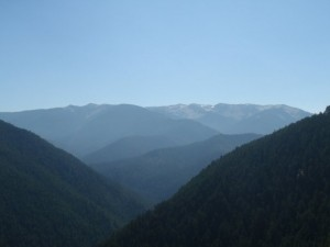 View from Hurriance Ridge