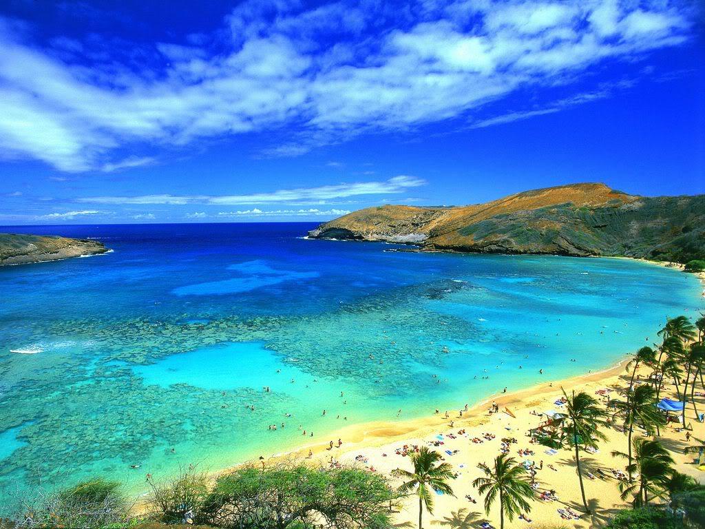 go Oahu card – YeahThatsKosher – Kosher Restaurants & Travel