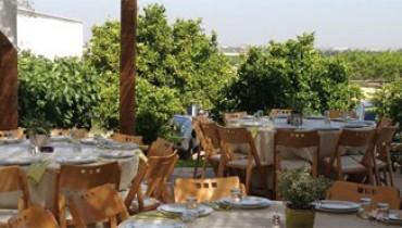 Joyce-israel-kosher-restaurant