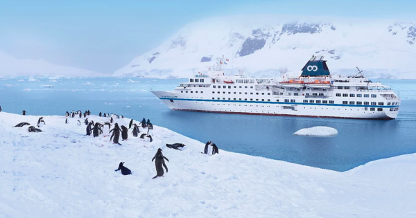 WOW! First-Ever Kosher Cruise to Antarctica Sets Sail This December!